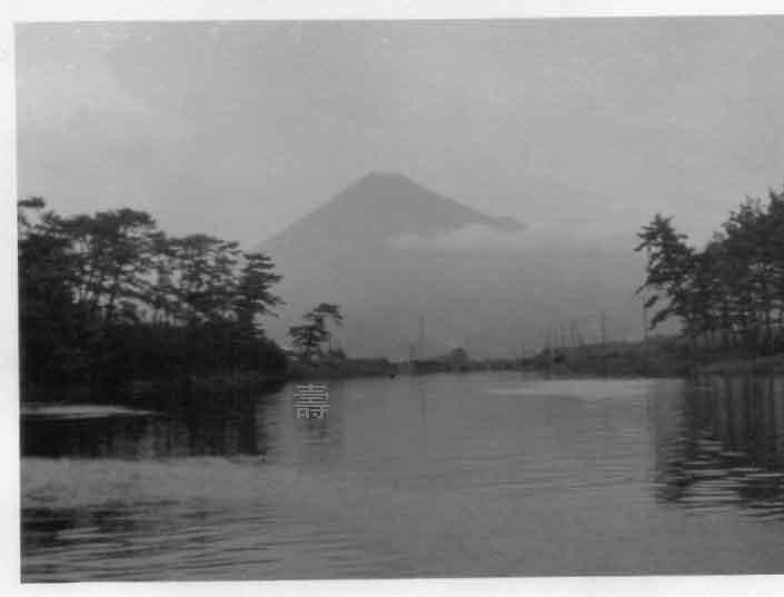 blog②若いころの写真073吉原沼川からの富士山.jpg